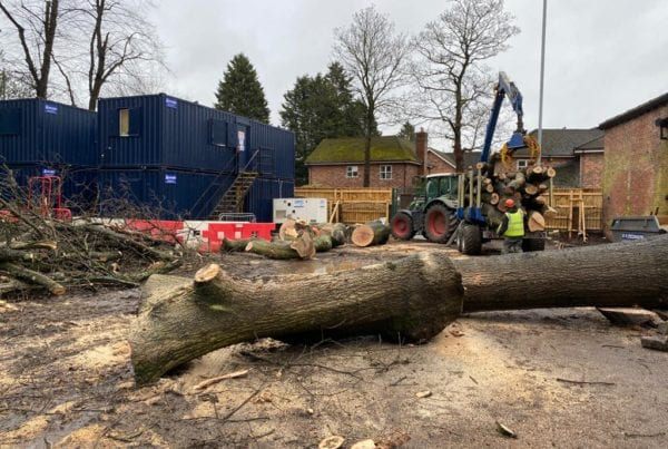 Site Clearance Tree Clearance Didsbury Manchester